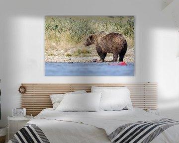 Grizzly beer  van Menno Schaefer