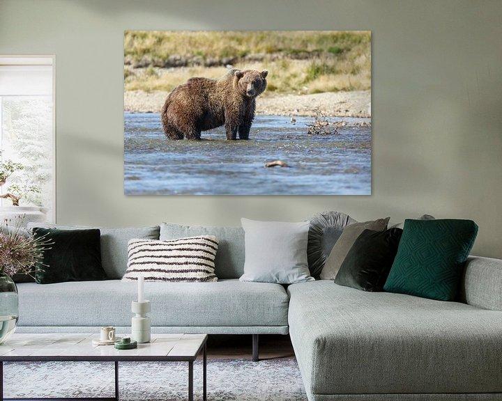 Sfeerimpressie: Grizzly beer jagend  van Menno Schaefer