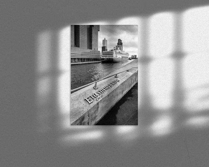 Sfeerimpressie: Erasmusbrug  van Menno Schaefer
