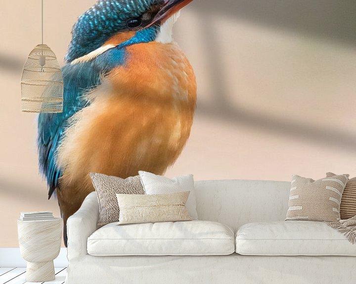 Sfeerimpressie behang: IJsvogel van Judith Borremans