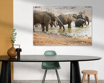 Olifanten waterprettereter von Dexter Reijsmeijer