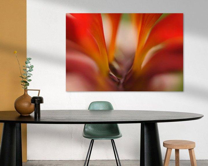 Sfeerimpressie: Mooi rood.... van Carla Mesken-Dijkhoff