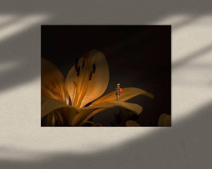Sfeerimpressie: flower exposition van Compuinfoto .