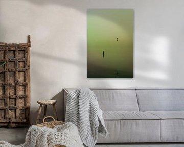 Dichte mist over de Rijkerswoerdse Plassen.  von Robert Wiggers