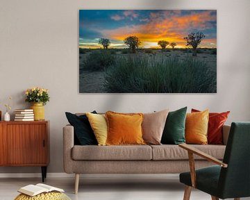 Kokerbomen bij zonsopkomst in de Kalahari woestijn, Namibië van Rietje Bulthuis