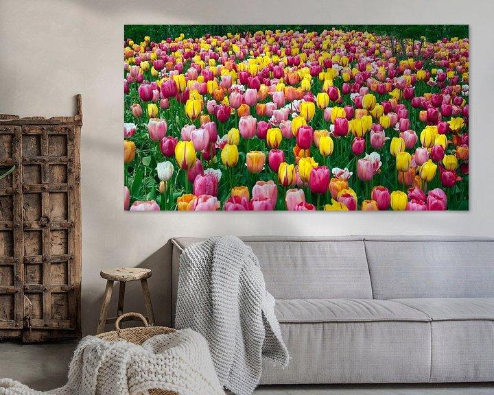 Beispiel: veld met paarse en gele tulpen von ChrisWillemsen