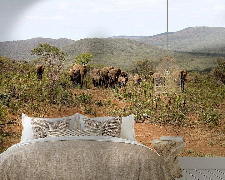 Sfeerimpressie behang: Olifanten kudde van LottevD