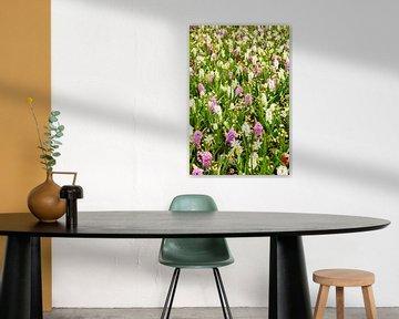 Hyacinten en Narcissen van Ben van Boom