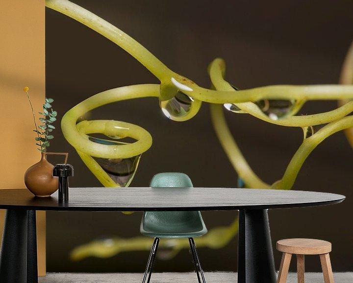 Sfeerimpressie behang: waterdruppels gevangen in druivenrank van Compuinfoto .