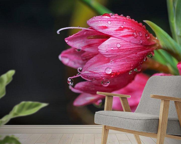Sfeerimpressie behang: waterdruppels op lelie van Compuinfoto .