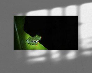 staring into the dark