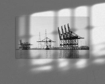 Deurganckdok von Rafael Delaedt