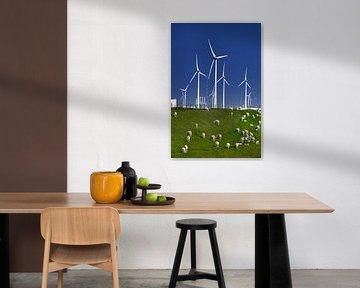 Schapen en windmolens von Harrie Muis