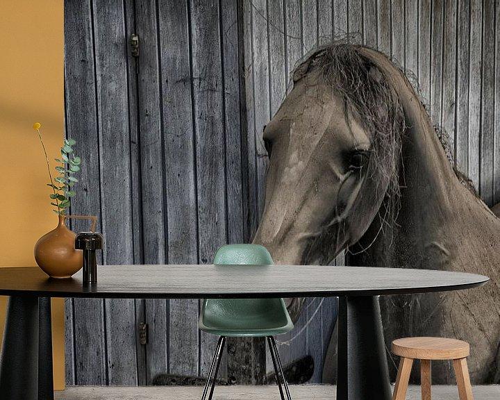 Beispiel fototapete: Paard von Ronald Rietveld