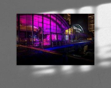 Cruise Terminal Rotterdam van Henri van Avezaath