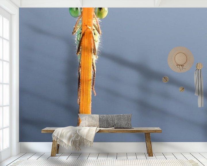Sfeerimpressie behang: Kiekeboe!! van Pim Leijen