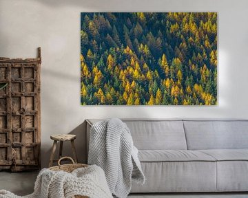 Herbst in der Schweiz von Bas Koster