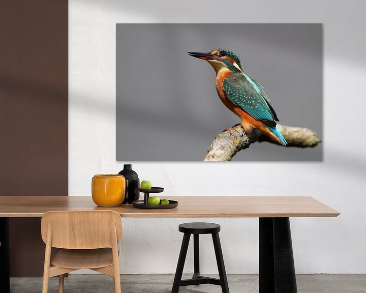 Sfeerimpressie: IJsvogel van Menno Schaefer