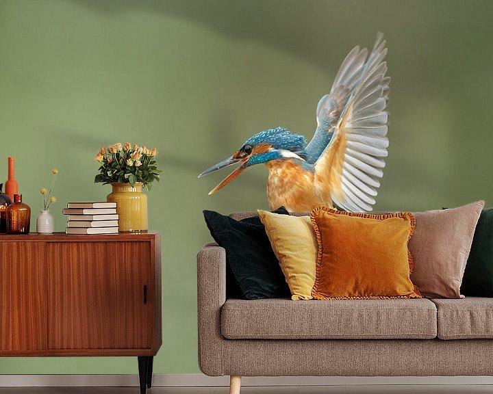 Impression: Kingfisher sur Menno Schaefer