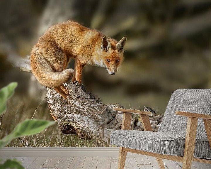 Sfeerimpressie behang: Vos boven op een boomstronk van Menno Schaefer