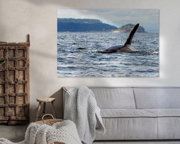 Sfeerimpressie: Een orka van Menno Schaefer
