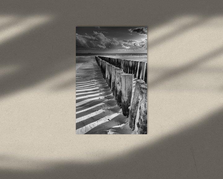 Impression: Têtes de piquet noires et blanches sur Zeeland op Foto