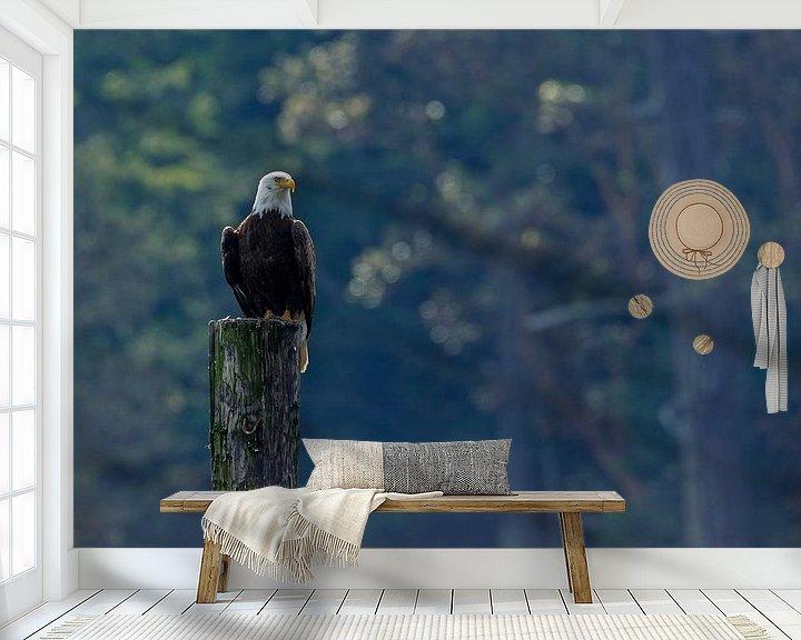 Sfeerimpressie behang: Zeearend op een paal van Menno Schaefer
