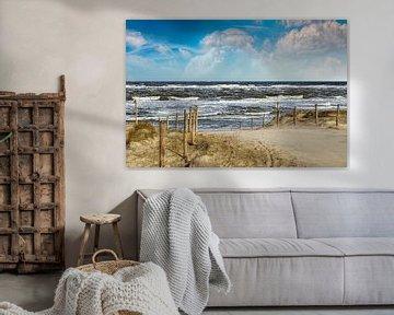 Pad door de duinen naar het strand van Peter Roder
