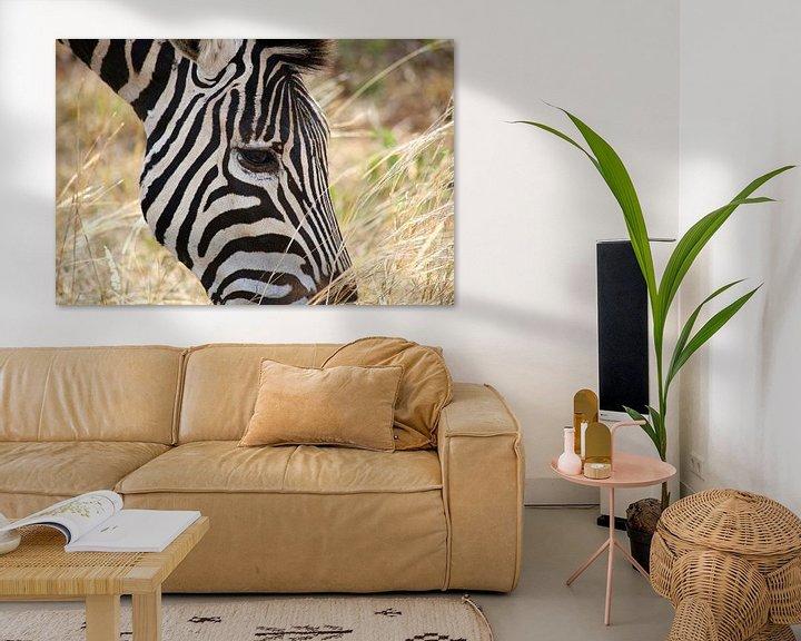 Beispiel: Zebra close up von Annelies Voss
