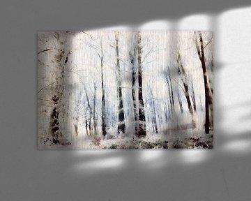 Winter im Laubwald