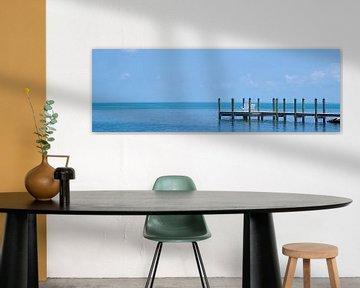 FLORIDA KEYS Rustige plek | Panorama van Melanie Viola