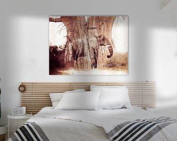 The Baobab tree and the elephant von Nannie van der Wal