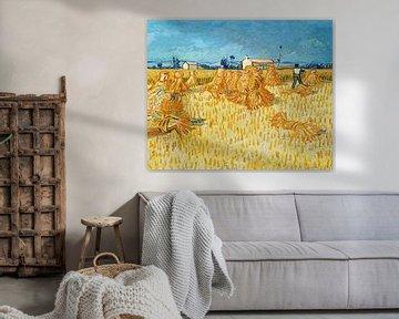 Ernte in der Provence - Vincent van Gogh