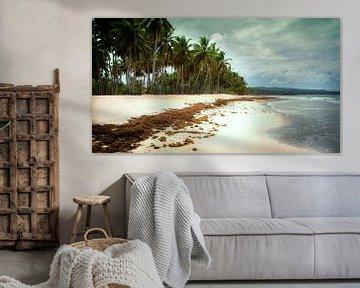 Paradijs eiland van Tonny Visser-Vink