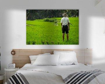 Landarbeider voor rijstvelden - Bali, Indonesië. van Martijn Smeets
