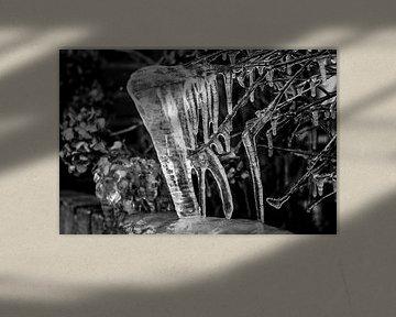 winter 2016  von Janna-Jacoba van der Laag