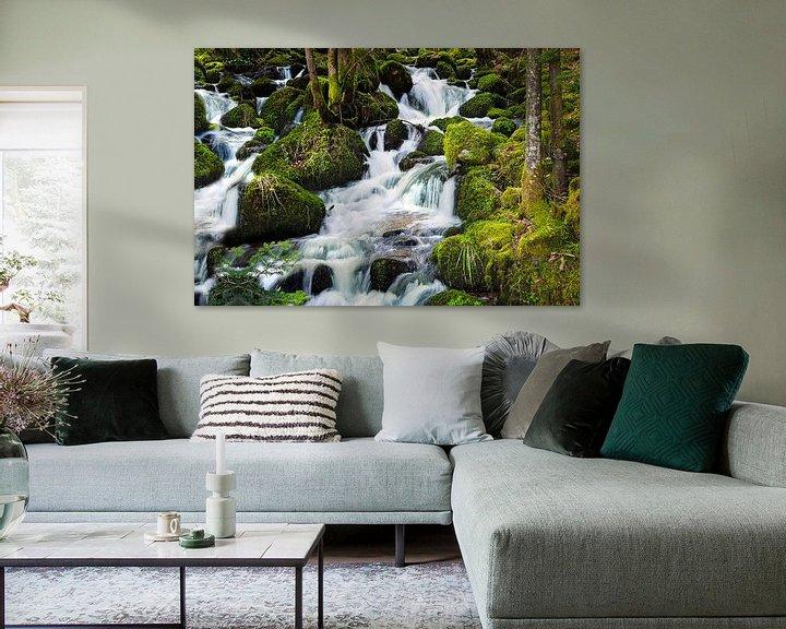 Sfeerimpressie: Waterval Zwarte Woud 2 van Anouschka Hendriks
