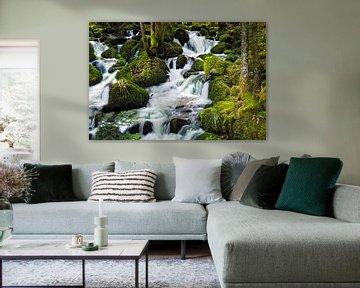 Waterval Zwarte Woud 2 van Anouschka Hendriks