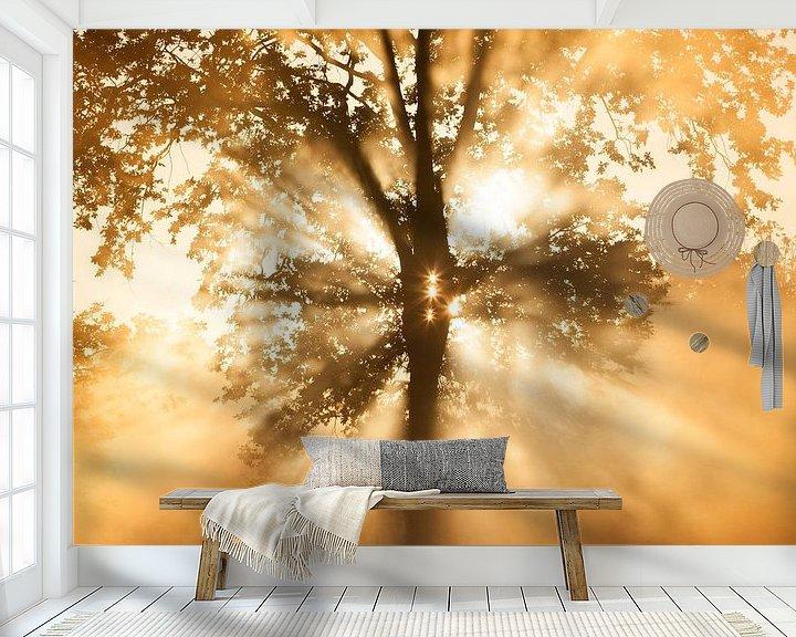 Sfeerimpressie behang: Zonnestralen van Bob Luijks
