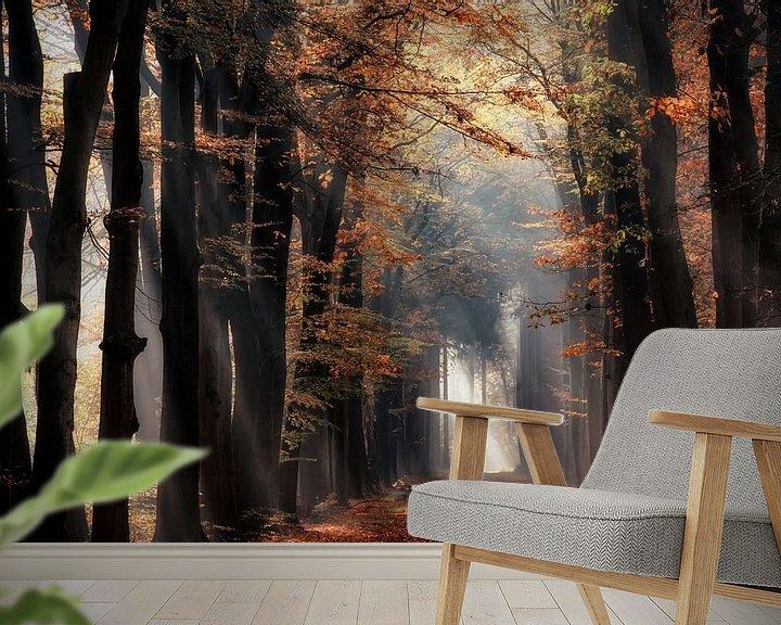 Sfeerimpressie behang: In de spotlights van Lars van de Goor