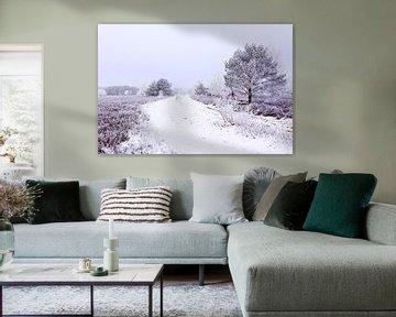 Winter im Heideland von Gisela Scheffbuch