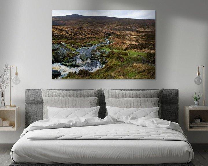 Beispiel: Wicklow mountains in Ierland von Steven Dijkshoorn