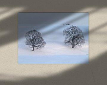 Winter 01 van Ilona Picha-Höberth