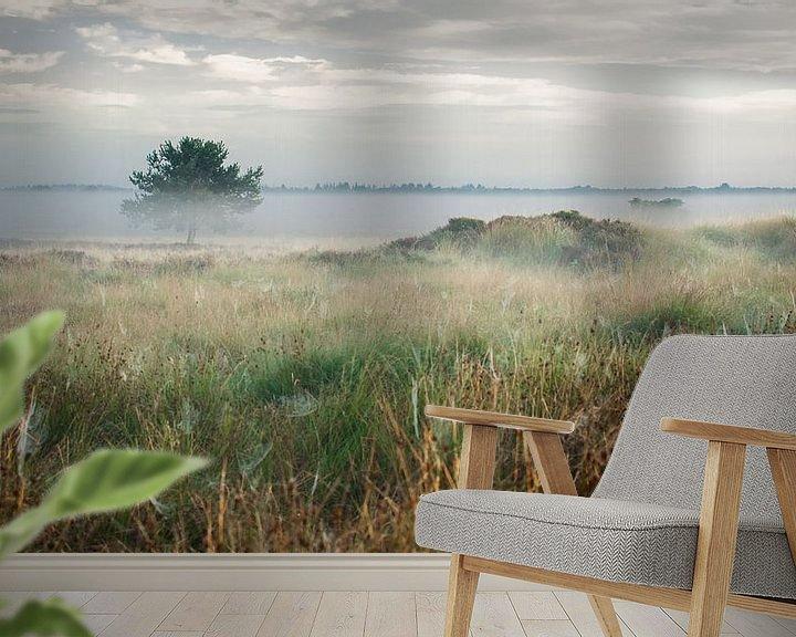 Impression: Lueur matinale sur les Dwingelderveld, Drenthe sur Fotografiecor .nl