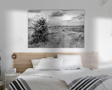 Nature in Black and White von Petra ter Veer