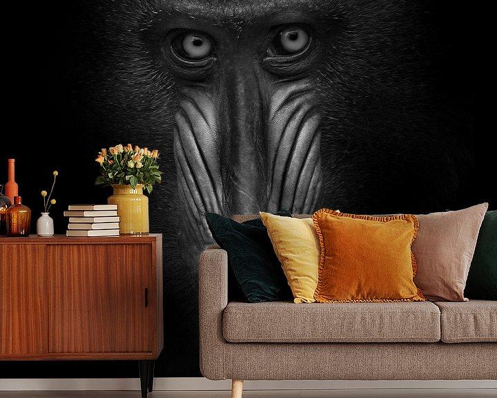Sfeerimpressie behang: Oogcontact met mandril van Ruud Peters