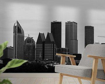 Skyline Den Haag van Marian Sintemaartensdijk