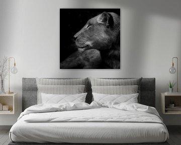Ihre Majestät, Porträt einer Löwin von Ruud Peters