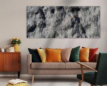 Moon Bug? van Wijnand Kroes