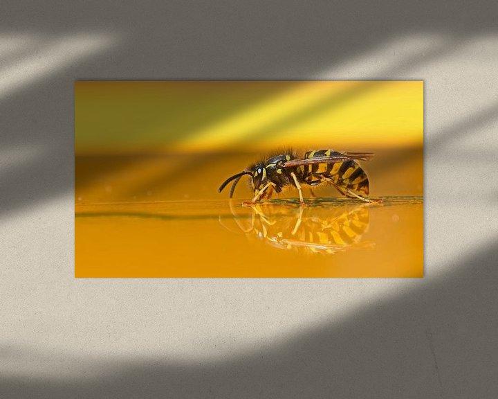 Beispiel: Limonadewesp in Geel von Dick Vermeij